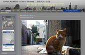 TOKIO ADAGIO = Cats + Streets ...