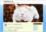 kagoneko_blog_01