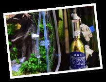 CO2フルセット チャームオリジナルコンパクトレギュレーター BセットDX